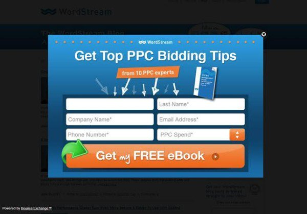 get top ppc bidding tips